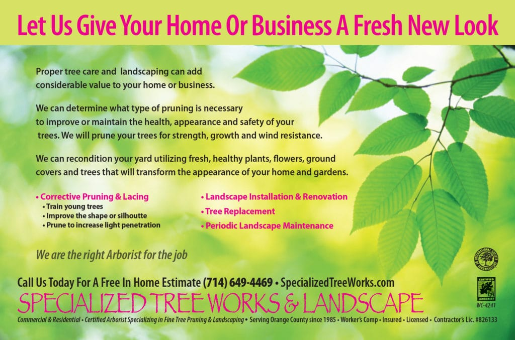 Direct Mail Design & Production – Specialized Treeworks